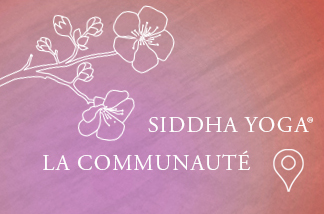 la communauté siddha yoga en france